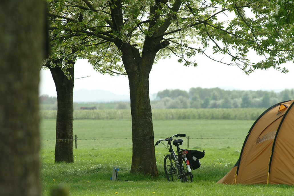 Campingplektent